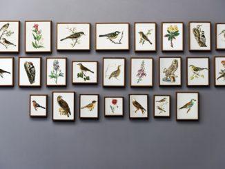 Výstava v Artotéce